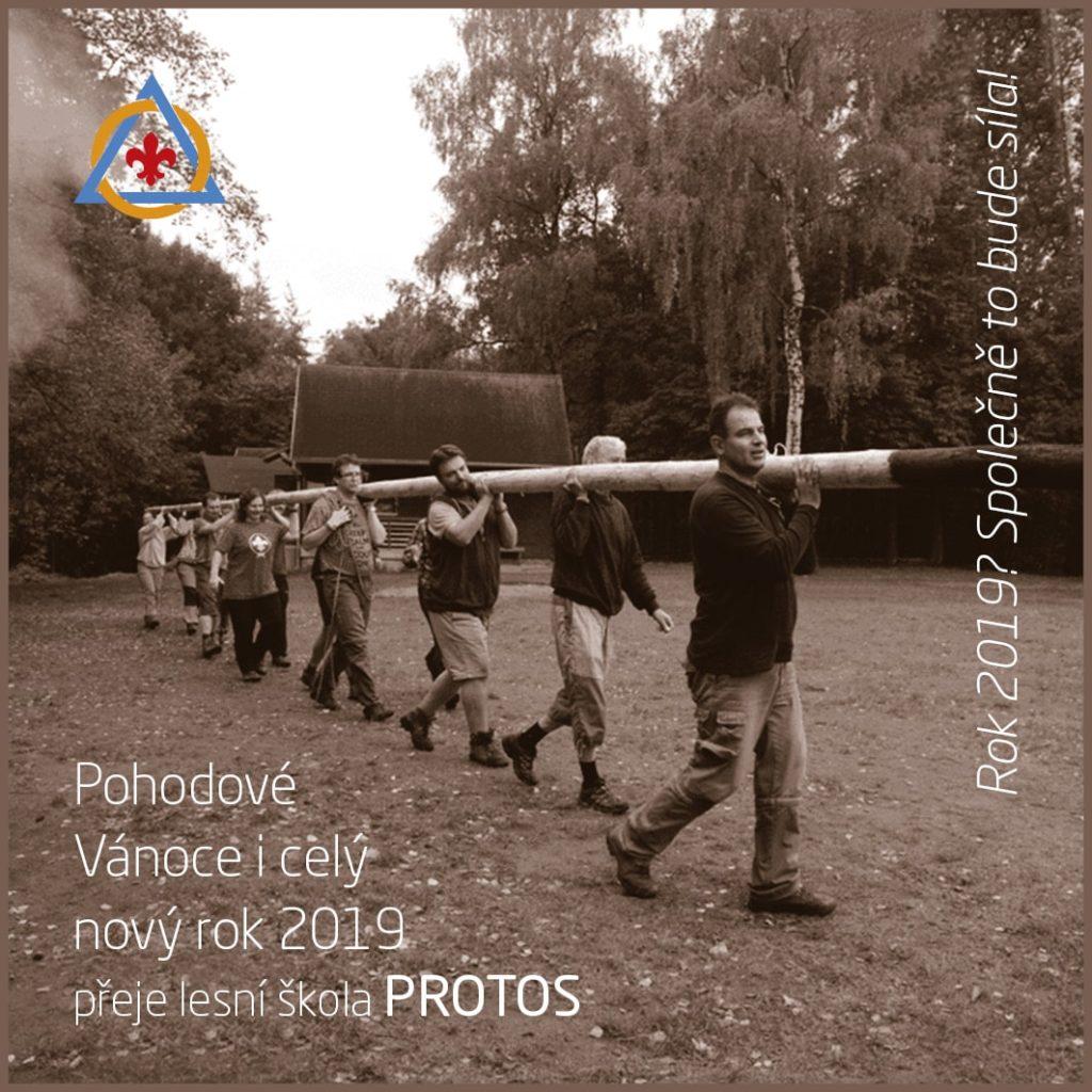 Protos PF 2019